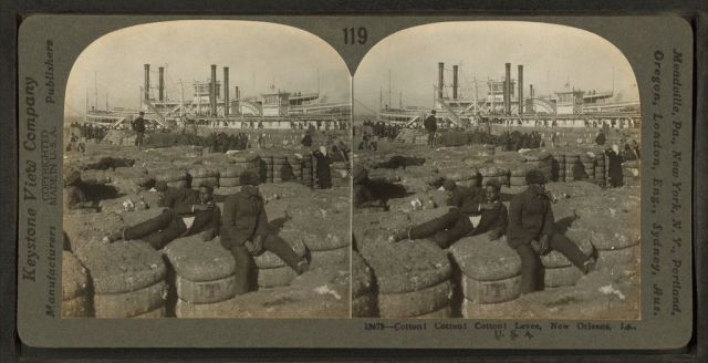 Stereoscopic view - cotton on a New Orleans levee