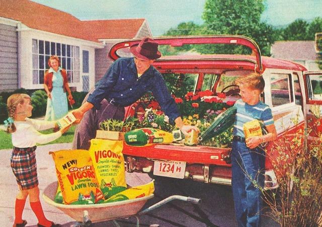 suburbia-garden-vigaro-58-swscan03228-copy-copy
